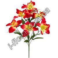 Букет орхидей   10шт