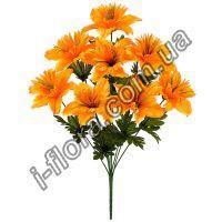 у568  Нарцисс махровый     20шт