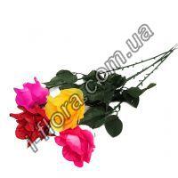 Роза одиночная  итальянка  56см  20шт