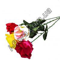 Роза одиночная бутон раскрытый   56см   20 шт