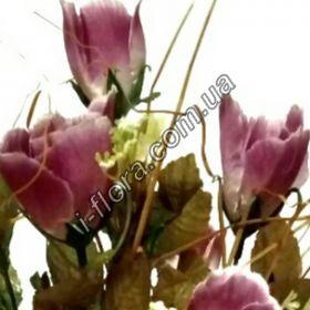 Роза чайная   12шт