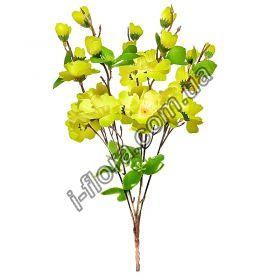 Букет орхидеи  40шт